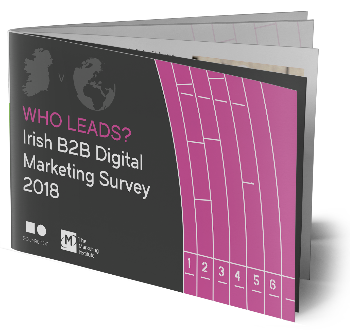 irish-digital-marketing-survey.png