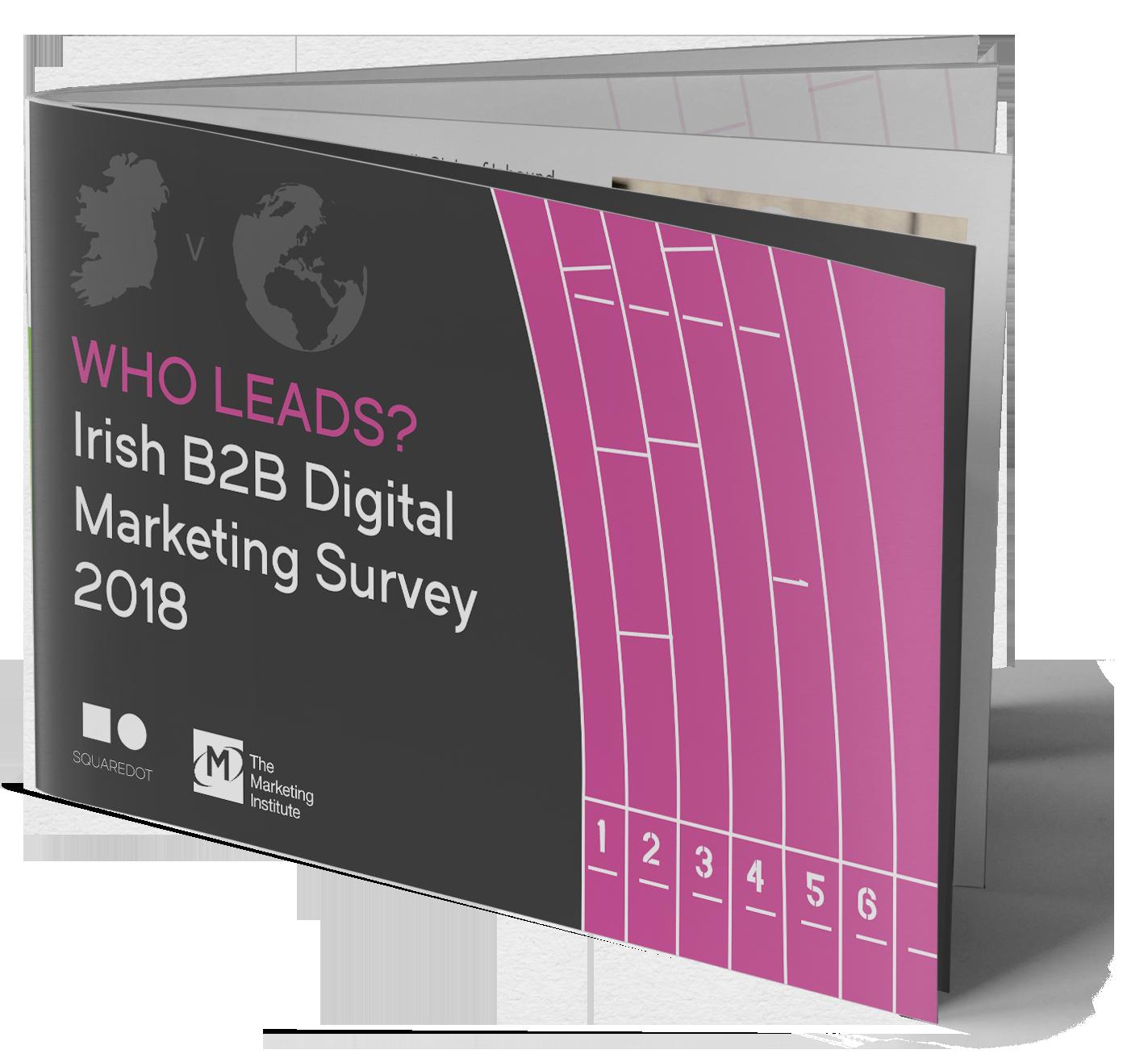 irish-digital-marketing-survey.png
