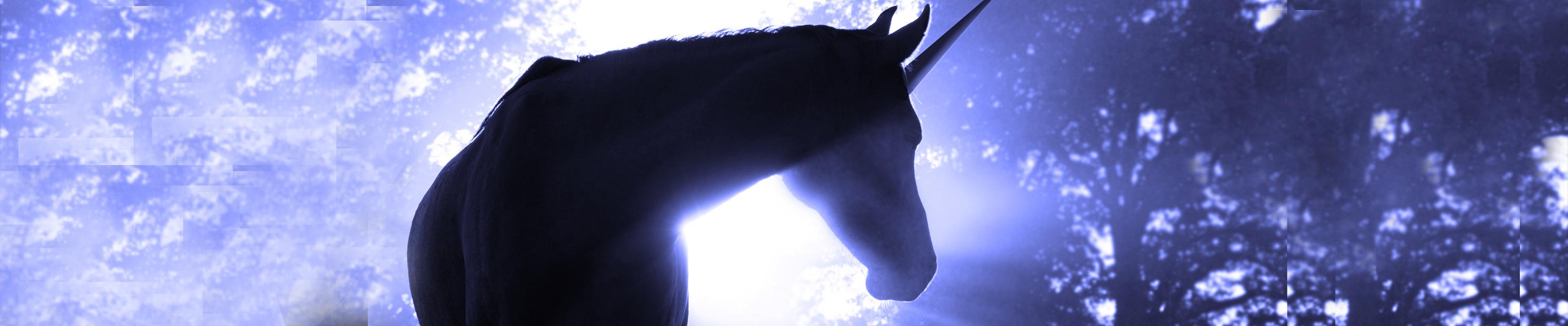 Unicorn_Banner.png
